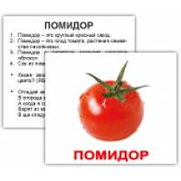 Карточки Домана МИНИ с фактами ОВОЩИ40 Вундеркинд с пелёнок 5634