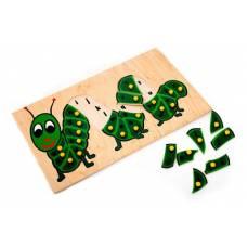 Деревянная игрушка  Гусеница Англ. ЛЭМ 5012