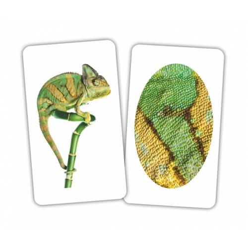 Карточки Домана Игра Животное и фрагмент Вундеркинд с пелёнок 1516