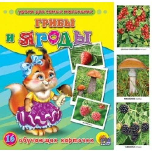 Обучающие карточки Грибы и ягоды Пособие в папке Проф-Пресс 9785378056804