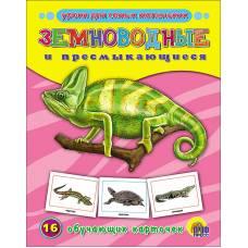 Обучающие карточки Земноводные и пресмыкающиеся Пособие в папке Проф-Пресс 9785378072798