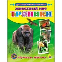 Обучающие карточки Животный мир. Тропики Пособие в папке Проф-Пресс 9785378255108