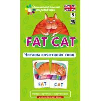 Занимательные карточки Английский Толстый кот (Fat Cat). Читаем сочетания слов. Level 5. Айрис-пресс 9785811244881