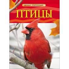 Книга Догерти Дж. Птицы Детская энциклопедия Росмэн 9785353057666