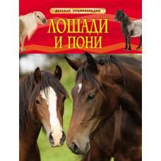 Книга Травина И. Лошади и пони Детская энциклопедия Росмэн 978-5-353-06899-0
