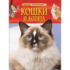 Книга Травина И. Кошки и котята Детская энциклопедия Росмэн 978-5-353-06912-6
