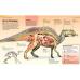 Книга Охотники за динозаврами Discovery Education Махаон 978-5-389-13959-6