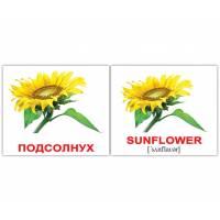Англо-русские карточки Домана МИНИ Цветы/Flowers 20 Вундеркинд с пелёнок 2100063476328