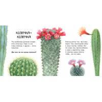 Наталия Чуб Про растения В гостях у природы