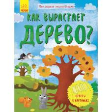 Моя первая энциклопедия Как вырастает дерево? Ранок 9789667488260