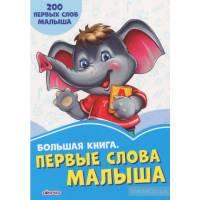 Васильковые книжки Большая книга. Первые слова малыша Сонечко 9789667498115