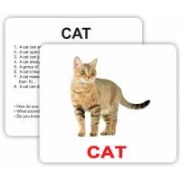 Английские карточки большие Pets and farm animals with facts 30 Вундеркинд с пелёнок 2100065970329