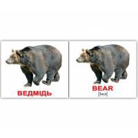 Англо-украинские карточки Домана МИНИ Дикі тварини/Wild animals40 Вундеркинд с пелёнок 2100064096228