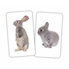 Карточки Домана Игра Животные и детёныши от 1 года Вундеркинд с пелёнок 2100065276414